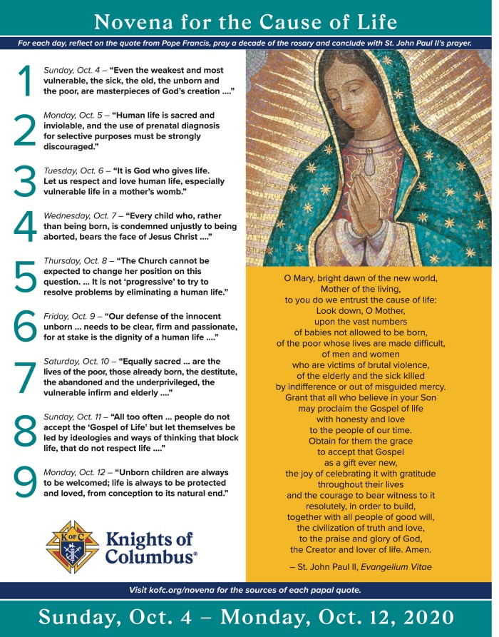 novena for the cause of life web